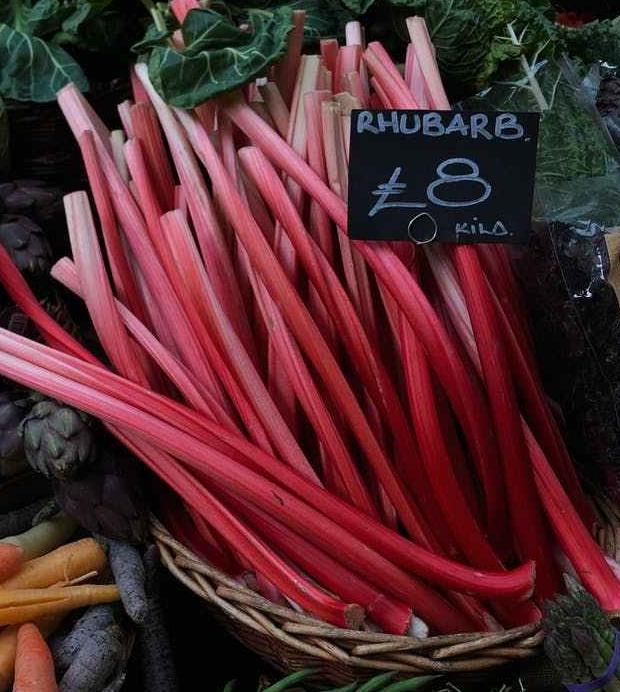 Rhubarb's Reign