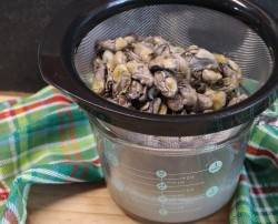 Prepared oysters for stew.
